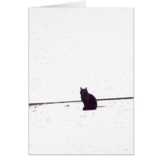 Cartão Gato só