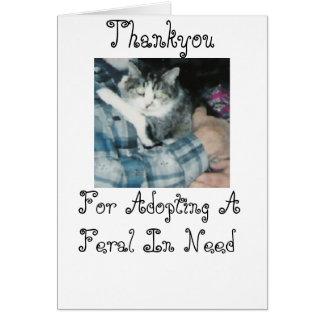 Cartão Gato Thankyou-Feroz