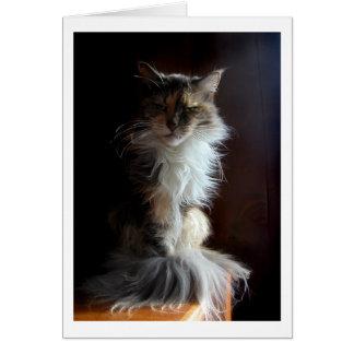 Cartão Gato velho Grouchy, digno