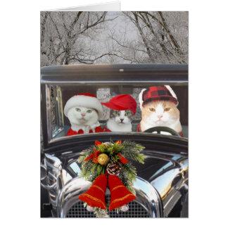 Cartão Gatos do Natal no carro