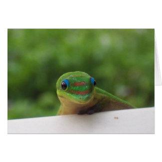 Cartão Geco no notecard dos trópicos