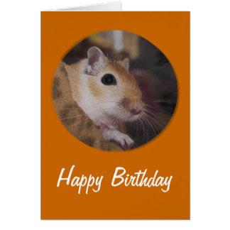 Cartão Gerbil dourado bonito do animal de estimação