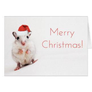 Cartão Gerbils Papai Noel do chapéu do papai noel do