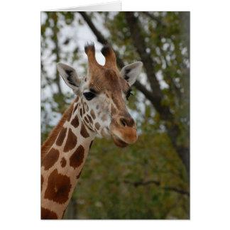Cartão Girafa no habitat natural