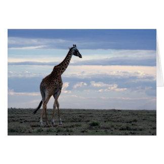Cartão girafa no maasai mara