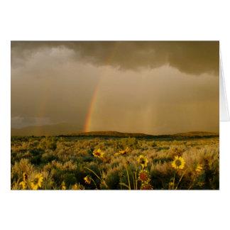 Cartão Girassóis e arco-íris na luz da noite