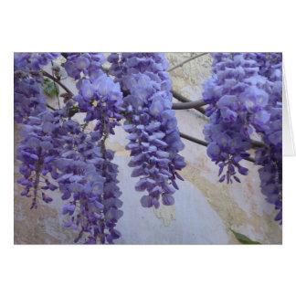 Cartão Glicínias em Provence