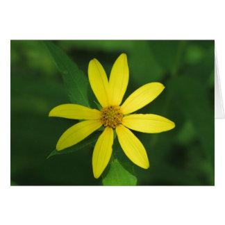 Cartão Glória amarela