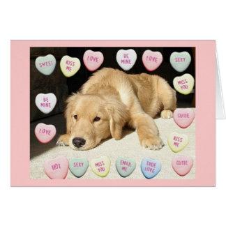 Cartão Golden retriever do dia dos namorados