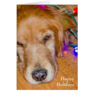 Cartão Golden retriever do Natal em luzes tangled