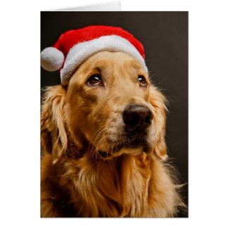 Cartão Golden retriever que levanta para seu Natal
