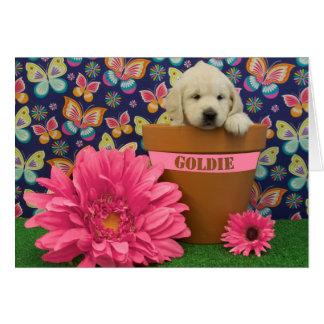 Cartão Goldie, foto da semana 5