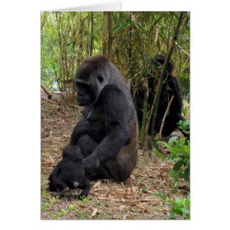 Cartão Gorila de planície ocidental - mamã e bebê