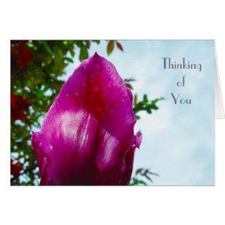 Cartão Gota da tulipa - pensando de você