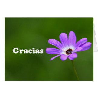 Cartão Gracias - obrigado no espanhol com margarida roxa