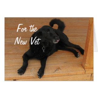 Cartão Graduação canina dos parabéns do formando do