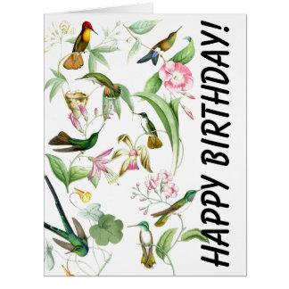 Cartão grande do aniversário dos colibris