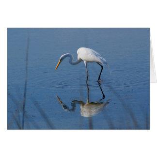 Cartão Grande Egret
