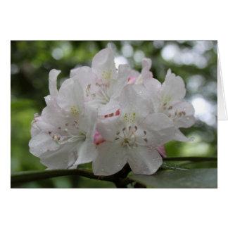 Cartão Grande rododendro