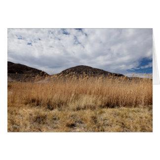 Cartão Grão no deserto, vazio para dentro