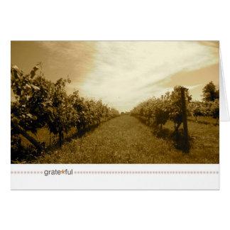 Cartão grate*ful_time antes do vinho
