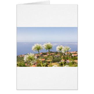 Cartão Grupo do agapanthus branco perto da vila e do mar
