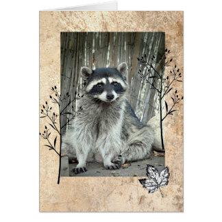 Cartão Guaxinim adorável