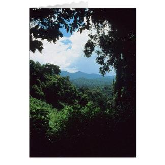 Cartão GUIANA FRANCESA: Opinião da floresta tropical