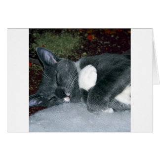 Cartão GUS sonolento