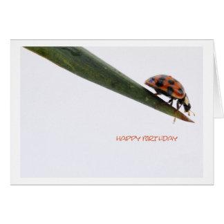 Cartão Happy Birthday Card Ladybird