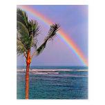 Cartão havaiano do arco-íris cartões postais