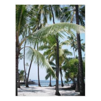 Cartão havaiano do paraíso