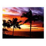 Cartão havaiano do por do sol cartao postal