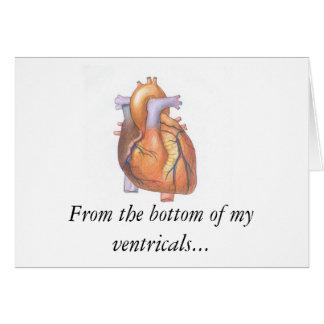 Cartão HeartReal, da parte inferior de meus ventricals…