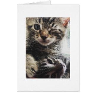 Cartão Hey Cutie!