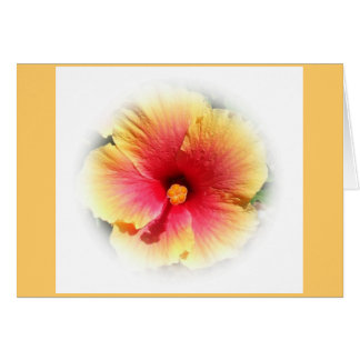 Cartão Hibiscus