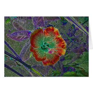 Cartão Hibiscus ácido