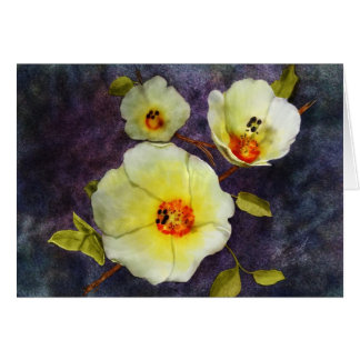 Cartão Hibiscus do deserto