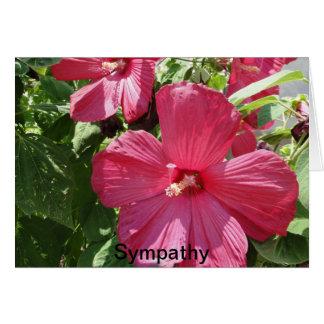 Cartão Hibiscus do rosa quente, simpatia