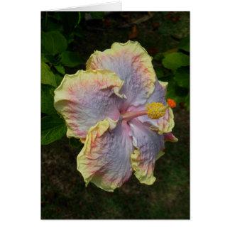 Cartão Hibiscus havaiano