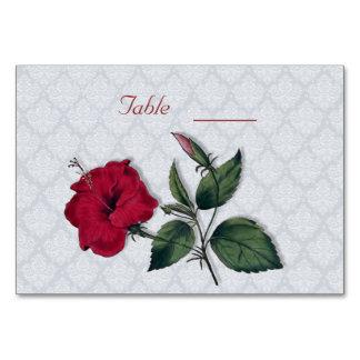Cartão Hibiscus vermelho e laço branco, luz - fundo azul