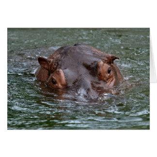 Cartão Hipopótamo 8879