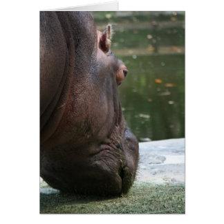 Cartão Hipopótamo com fome Notecard