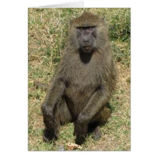 Cartão Homem do babuíno