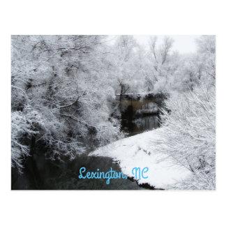 Cartão horizontal da neve sonhadora