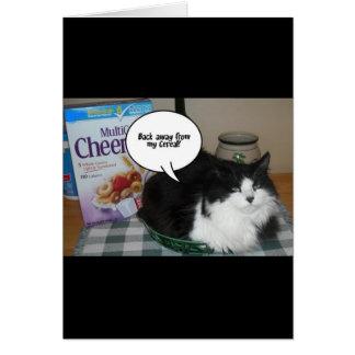 Cartão Humor do gato