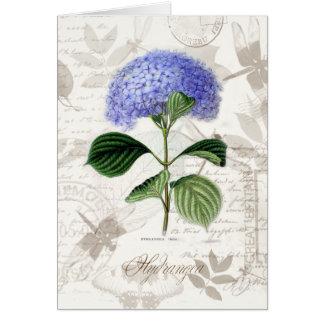 Cartão Hydrangea do vintage