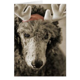 Cartão III do feriado de Reindoodle