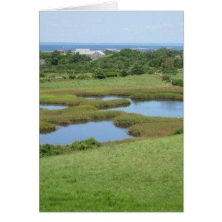 Cartão Ilha de bloco do prado da estrada de Champlin