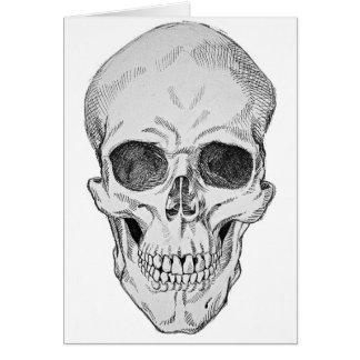Cartão Ilustração anatômica do crânio humano (vista